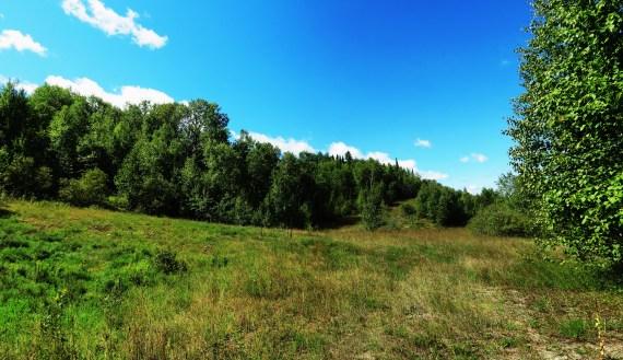 IMG_0070 Panorama