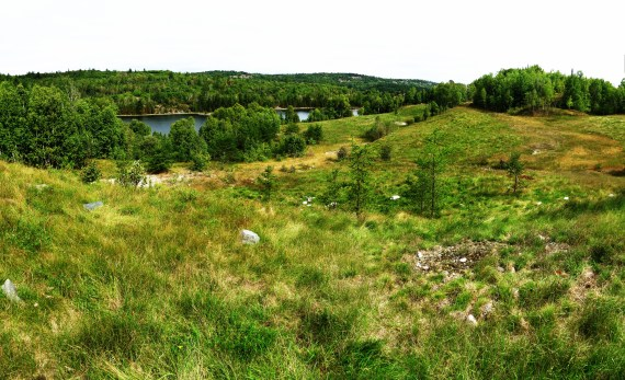 IMG_0133 Panorama