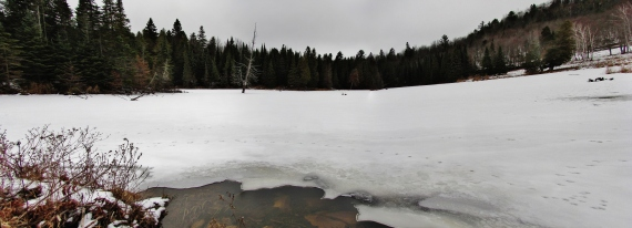 IMG_0002 Panorama