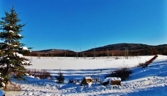IMG_0020 Panorama
