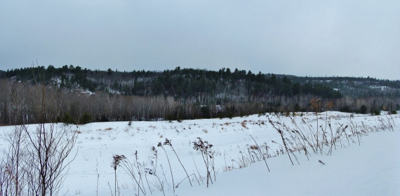 IMG_0074 Panorama